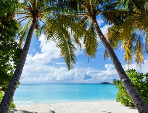 Sejur exotic Bahamas 2019, plecare 19.11 din Bucuresti (8 nopti cazare cu mic dejun + avion + transfer + asigurari)