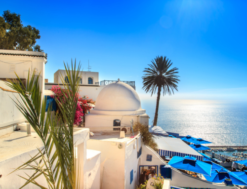 Charter Tunisia 2021, plecare 04.06. din Bucuresti! (avion + transfer + cazare + all inclusive)