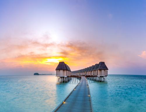 Last Minute Charter Maldive 2021, plecare din Bucuresti in 07.03! (avion + transfer + cazare + mese + asigurare)